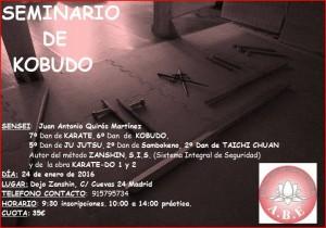 Seminario24012016